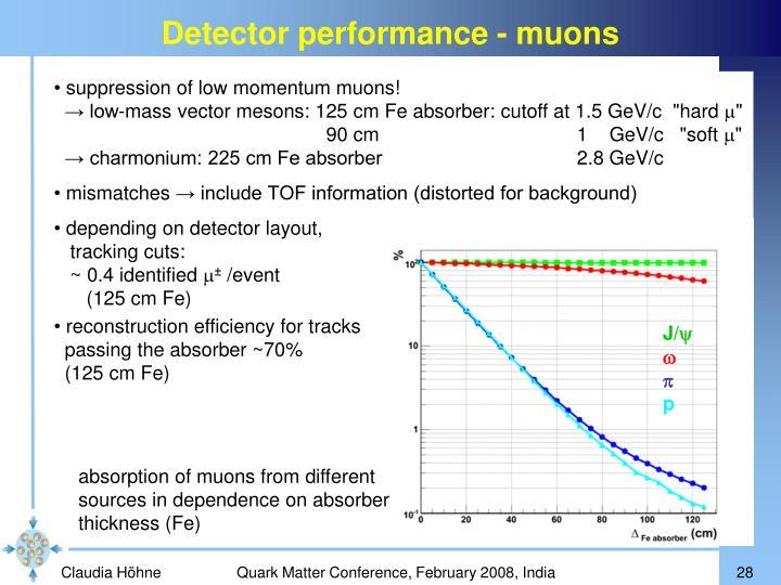 Detector performance - muons