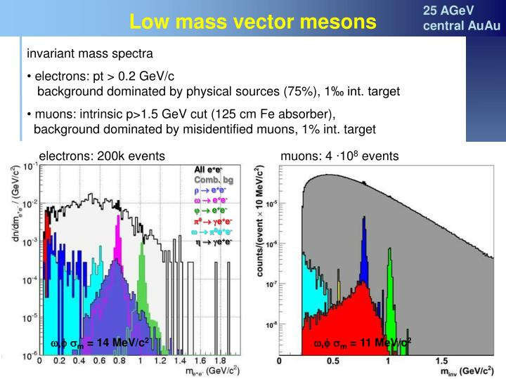 Low mass vector mesons