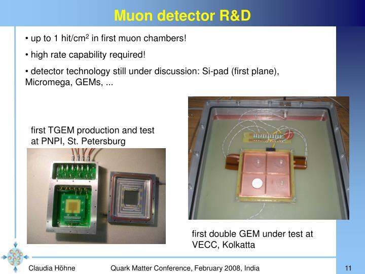 Muon detector R&D