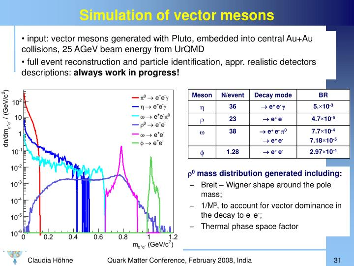 Simulation of vector mesons