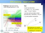 sts tracking heart of cbm