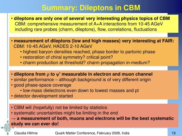Summary: Dileptons in CBM