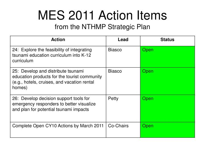 MES 2011 Action Items