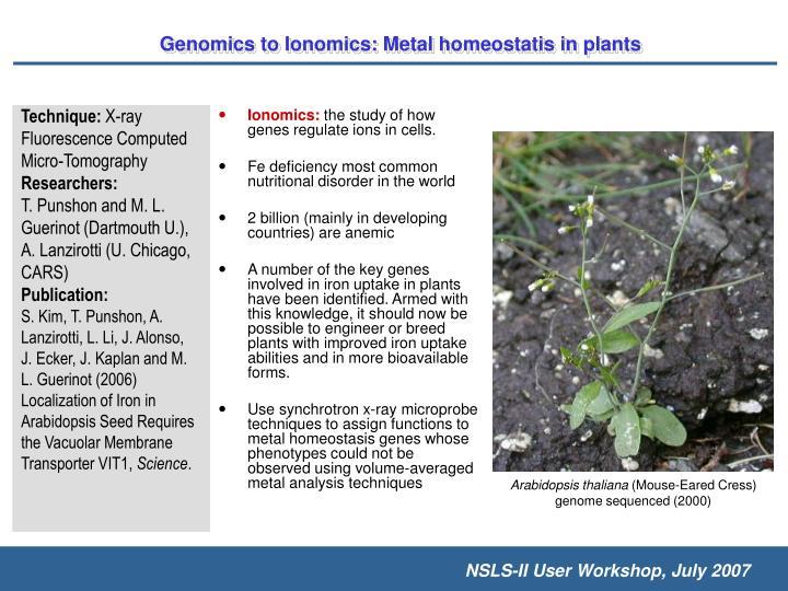 Ionomics: