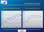 consumption forecast