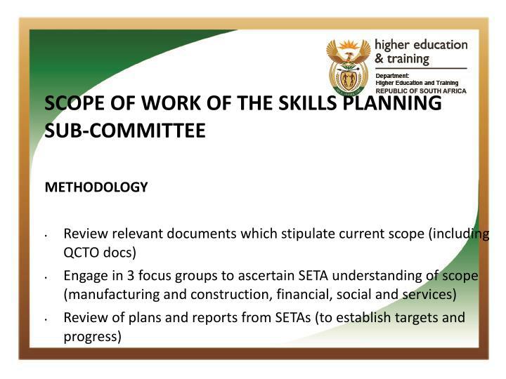 SCOPE OF WORK OF THE SKILLS PLANNING