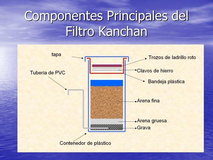 Componentes Principales del Filtro