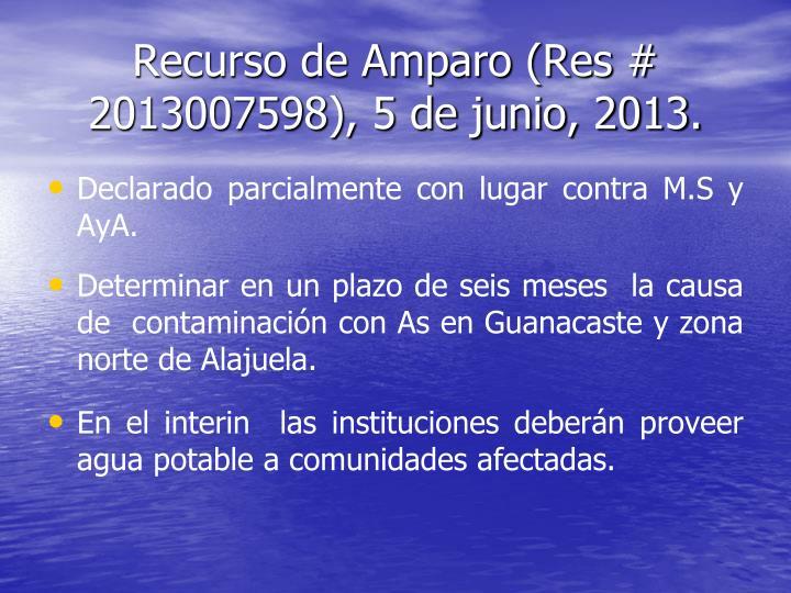 Recurso de Amparo (Res # 2013007598), 5 de junio, 2013.