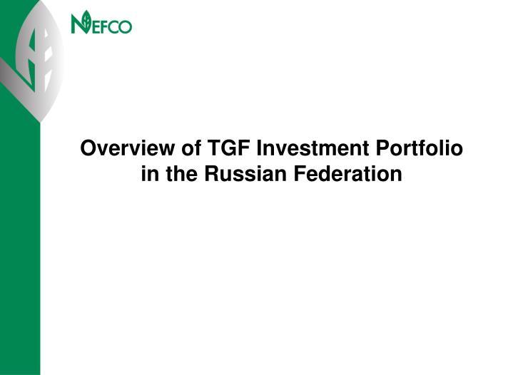Overview of TGF Investment Portfolio