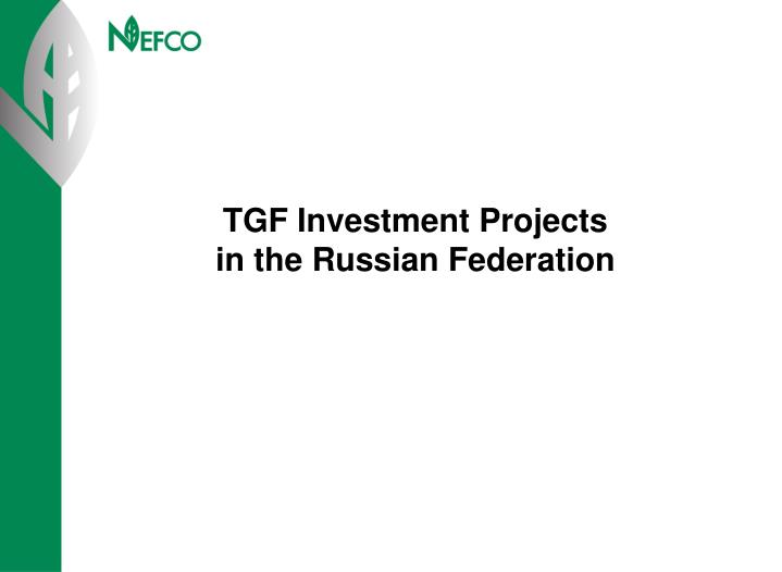 TGF Investment Projects