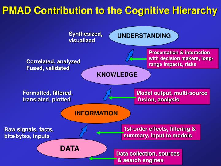 PMAD Contribution to the Cognitive Hierarchy