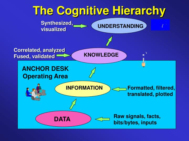 The Cognitive Hierarchy