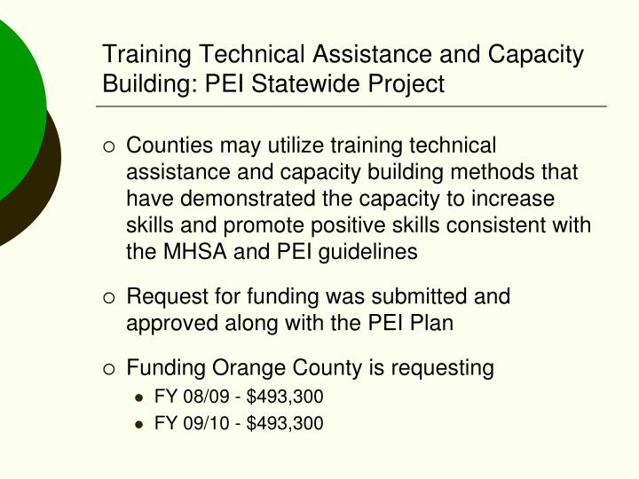 Training Technical Assistance and Capacity Building: PEI Statewide Project