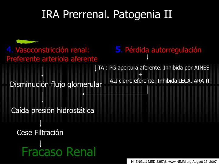 IRA Prerrenal. Patogenia II