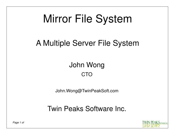 Mirror File System