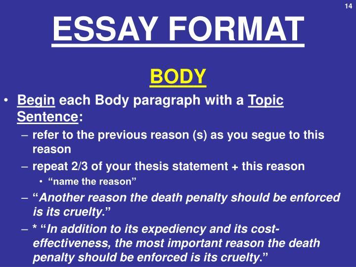 ESSAY FORMAT