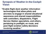 synopsis of weather in the cockpit vision