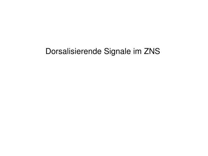 Dorsalisierende Signale im ZNS