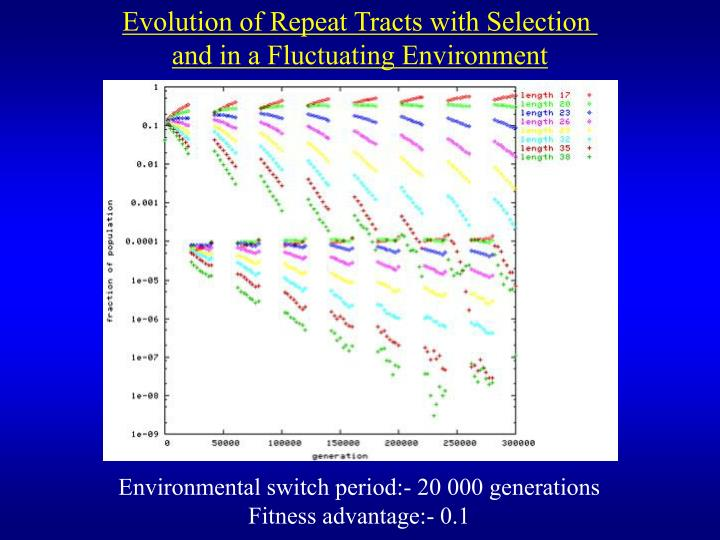 Evolution of Repeat Tracts with Selection