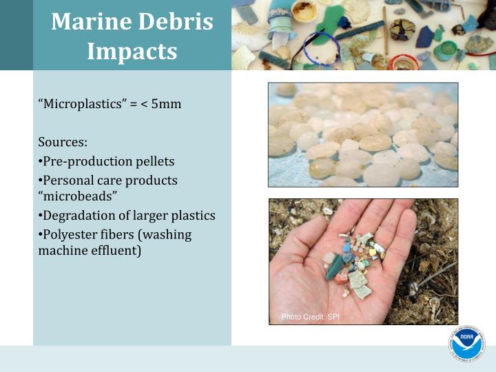 Marine Debris Impacts