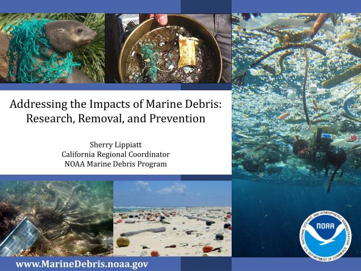 Addressing the Impacts of Marine Debris: