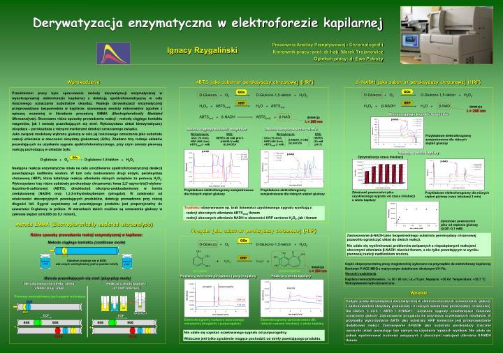 Pracownia Analizy Przepływowej i Chromatografii