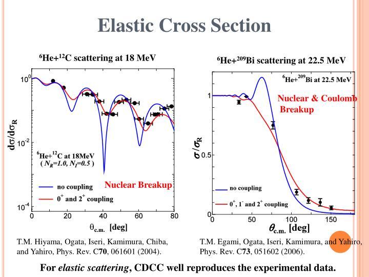 Elastic Cross Section