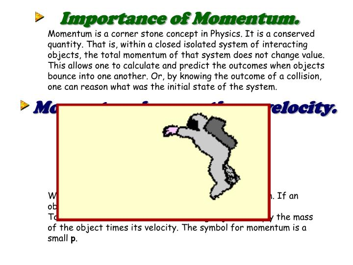 Importance of Momentum.