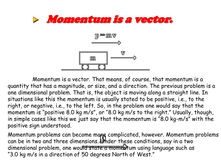 Momentum is a vector.