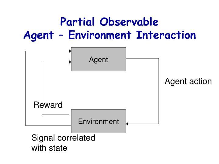 Partial Observable