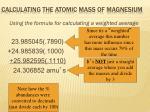 calculating the atomic mass of magnesium