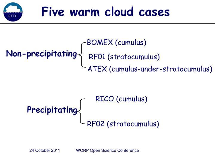 Five warm cloud cases