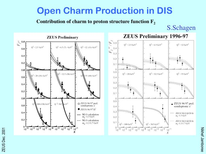 Open Charm Production in DIS