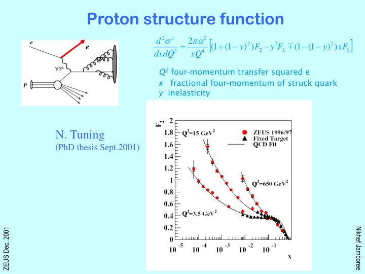 Proton structure function
