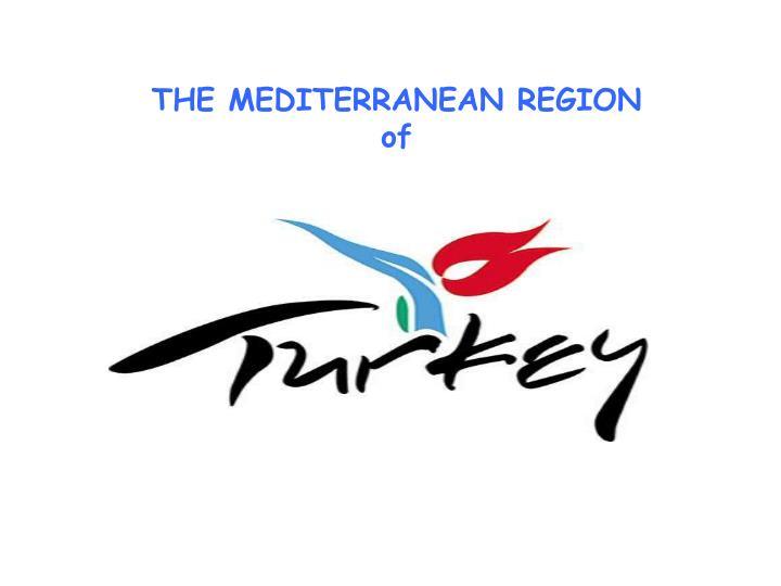 THE MEDITERRANEAN REGION