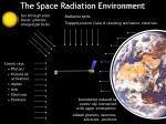 the radiation environment