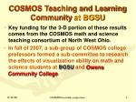 cosmos teaching and learning community at bgsu