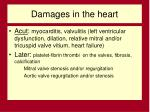 damages in the heart