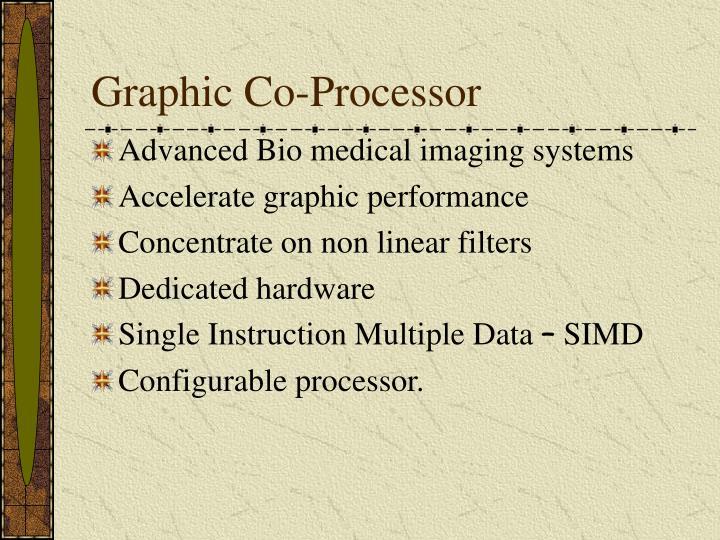 Graphic Co-Processor