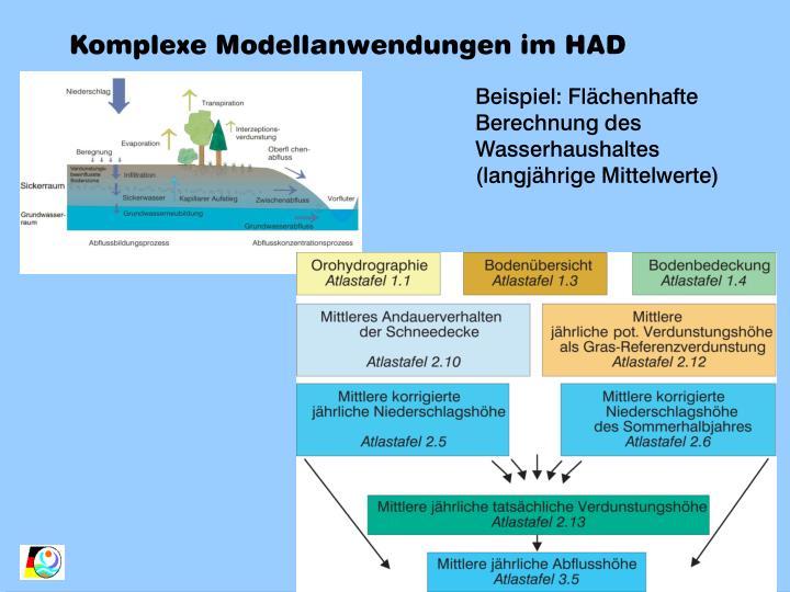 Komplexe Modellanwendungen im HAD