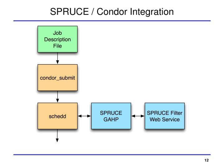 SPRUCE / Condor Integration
