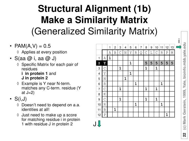 Structural Alignment (1b)