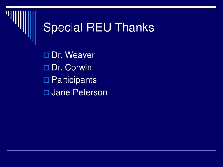 Special REU Thanks