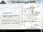 the meaning of nep