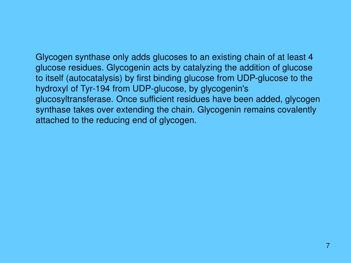 Glycogen synthase only adds glucoses to an existing chain of at least 4 glucose residues. Glycogenin acts by catalyzing the addition of glucose to itself (autocatalysis) by first binding glucose from UDP-glucose to the hydroxyl of Tyr-194 from UDP-glucose, by glycogenin's glucosyltransferase. Once sufficient residues have been added, glycogen synthase takes over extending the chain. Glycogenin remains covalently attached to the reducing end of glycogen.