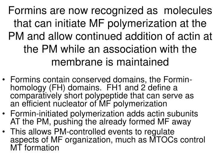 Formins are now recognized as  molecules that can initiate MF polymerization at the PM and allow continued addition of actin at the PM while an association with the membrane is maintained