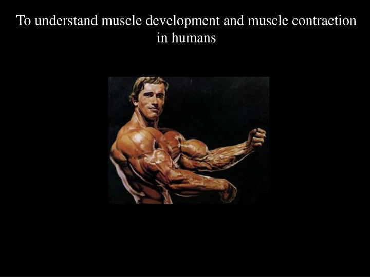To understand muscle development and muscle contraction in humans