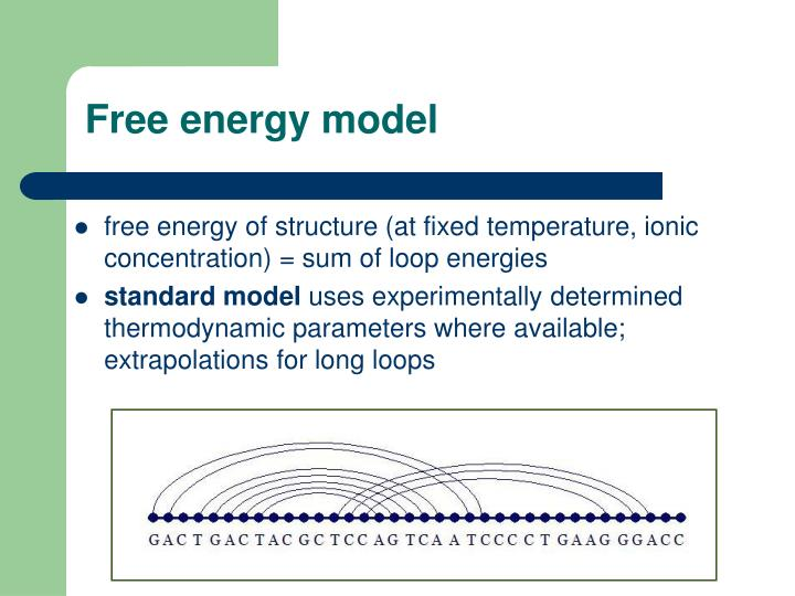 Free energy model