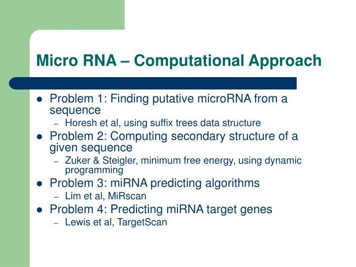 Micro RNA – Computational Approach