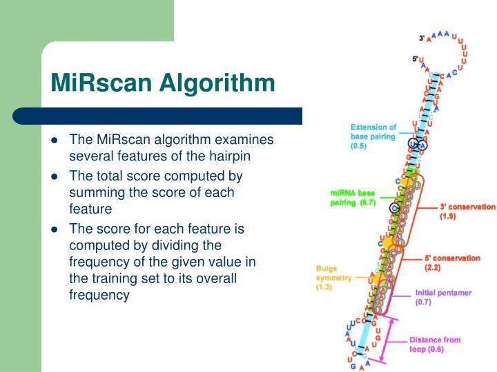 MiRscan Algorithm